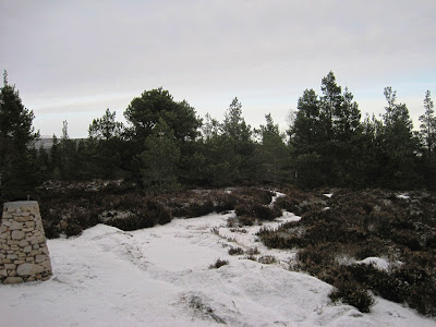 Path down Craigendarroch, Deeside.