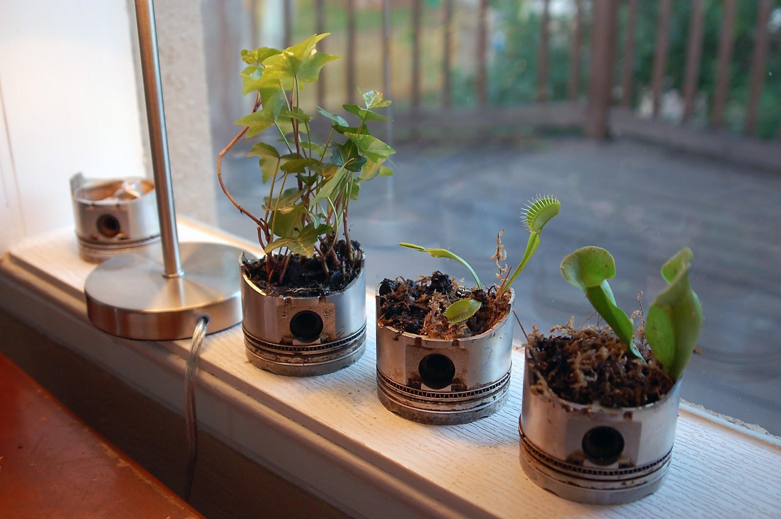 The Sentimental Mechanic Piston Im Plants