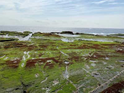 恵比須島の千畳敷