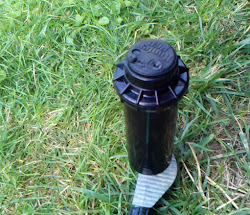 A quiet rotor sprinkler replaces an impact sprinkler on spike base
