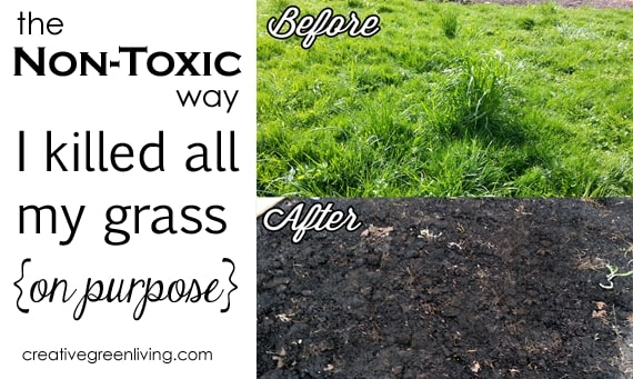how to kill grass without spray or poison