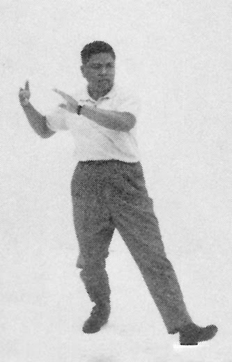 Tai Chi Chuan (Square Form) 63. Oblique Brush Knee Twist Step