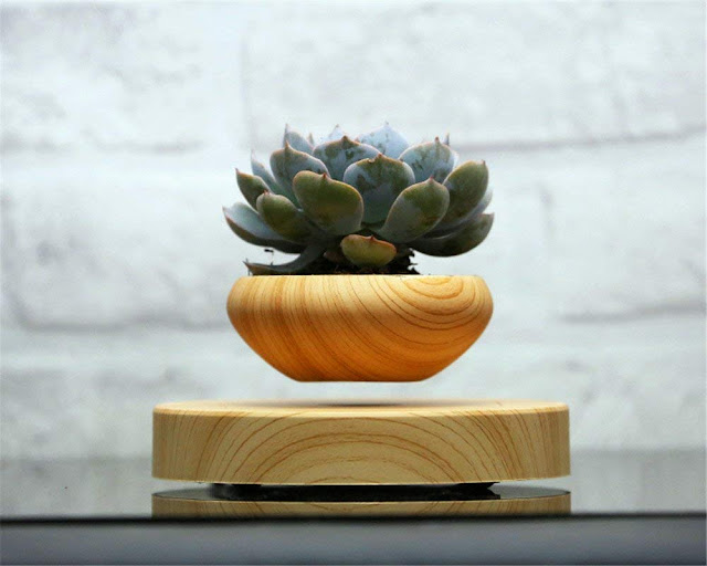 Post introducing the Arsai floating plant pot and Volta levitating light bulb from Floatley