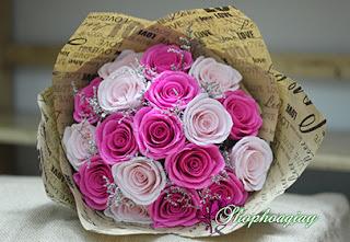 hoa hồng phớt phối trắng bằng giấy