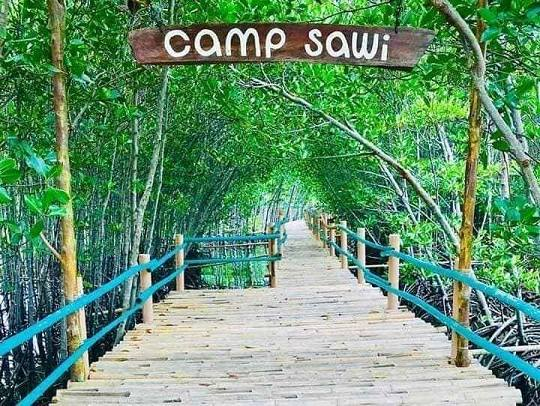 Omagieca Mangrove Garden in Bantayan Island