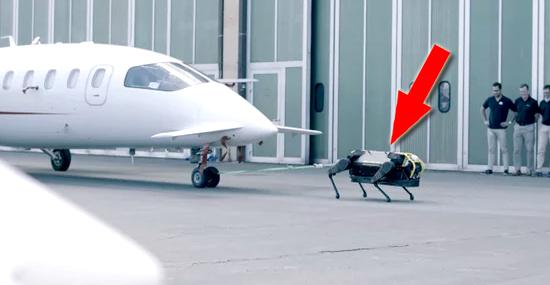 Incrível robô-cachorro puxa avião de 3 toneladas - Capa