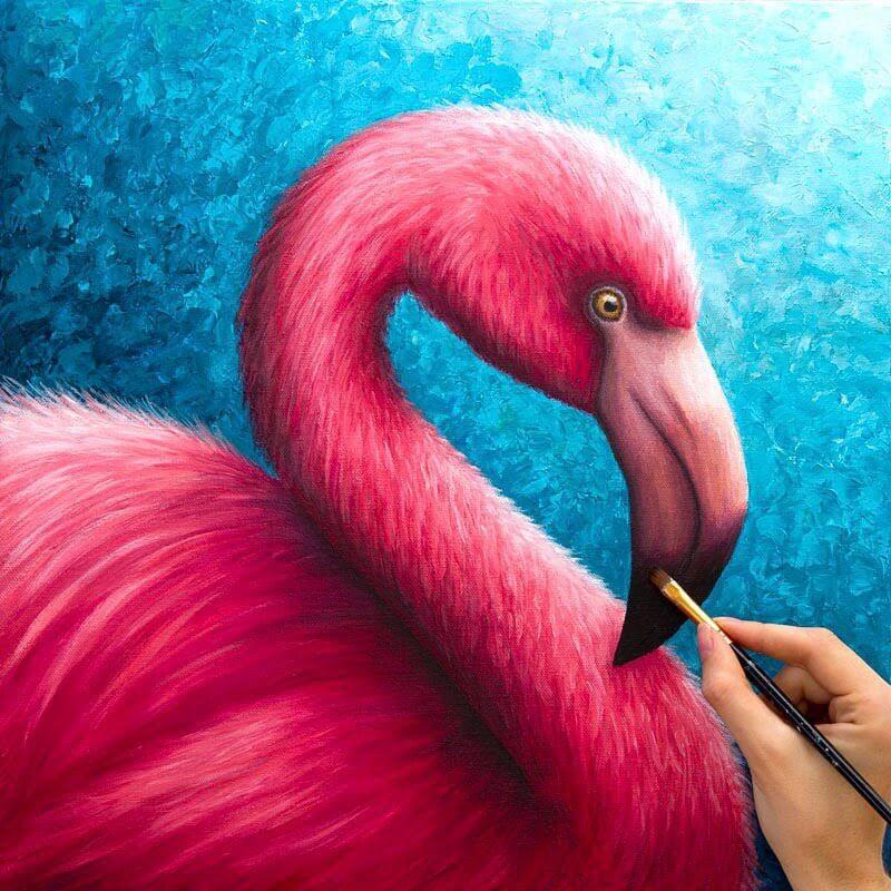 09-Flamingo-Rachel-Froud-www-designstack-co
