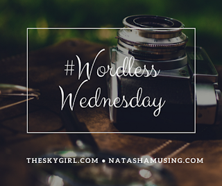wordless wednesday tag