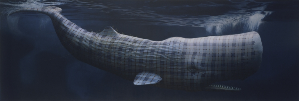 09-Moby-Dick-Merrilees-Sean-Landers-Paintings-of-Animals-that-Swap-their-Fur-for-Tartan-Coats-www-designstack-co