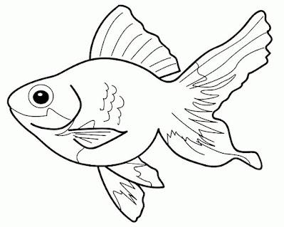 gambar sketsa ikan hias