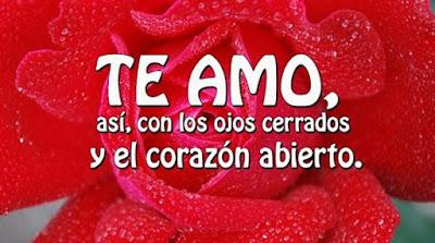 100 Frases Para El Amor De Mi Vida Frases Romanticas