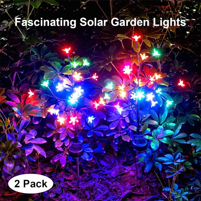 40% off Outdoor Solar Garden Stake Lights
