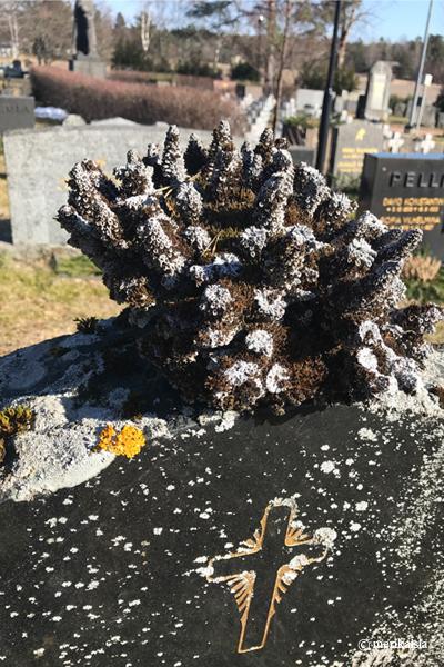 Kustavin hautausmaa