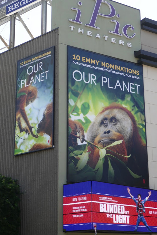 Our Planet season 1 Emmy nominee Orangutan billboards