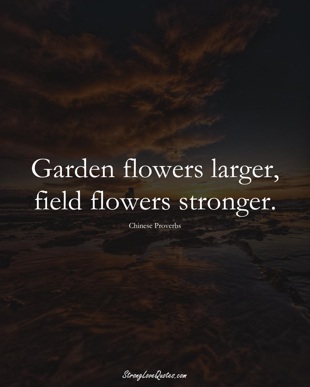 Garden flowers larger, field flowers stronger. (Chinese Sayings);  #AsianSayings