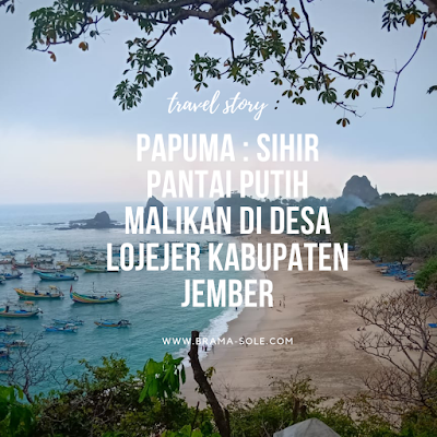 Papuma : Sihir Pantai Putih Malikan Di Desa Lojejer Kabupaten Jember