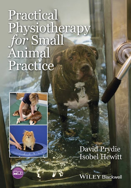 Practical physiotherapy for small animal practice  - WWW.VETBOOKSTORE.COM