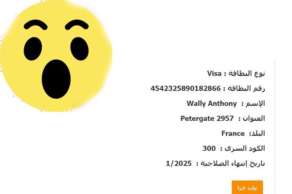 توليد الفيزا : موقع عربي لتوليد ارقام الفيزا الوهمية المشحونة 2021