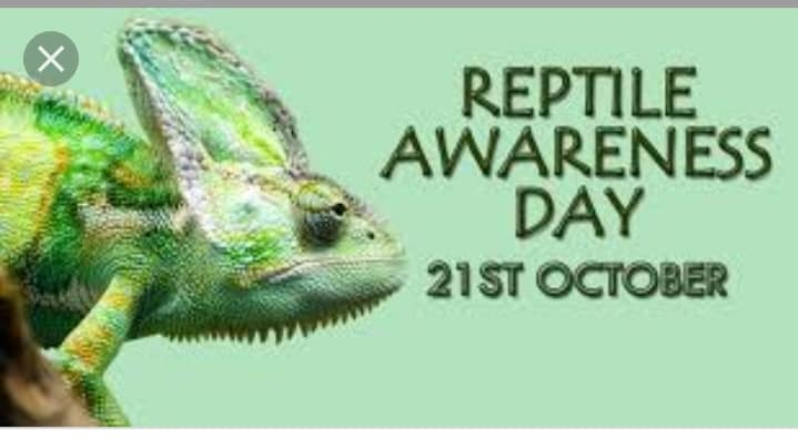 National Reptile Awareness Day Wishes for Whatsapp