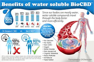 kalki water soluble cbd review