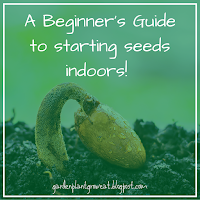 A Beginner's Guide to starting seeds indoors!