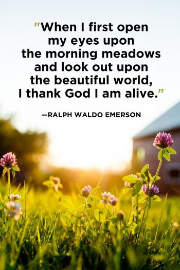 good morning quotes morning quotes good morning wishes good morning images with quotes morning wishes good morning quotes for her good morning have a nice day good morning blessings