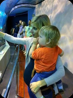 Barcelona aquarium, pregnant mother and child