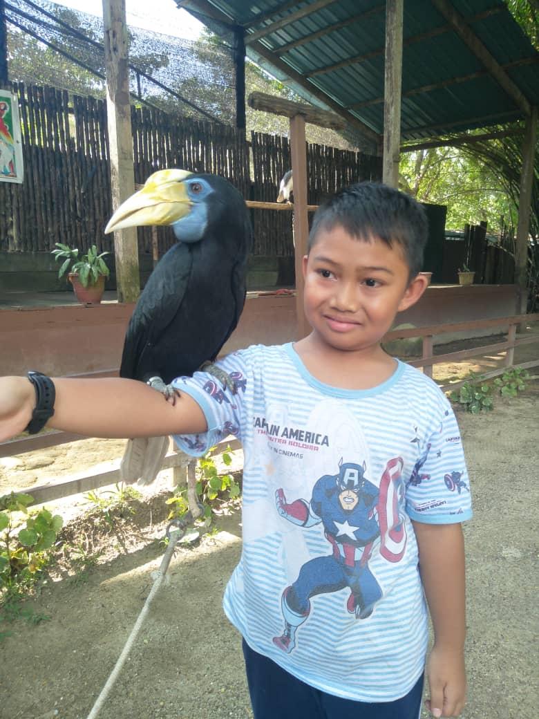 tempat menarik di Pulau Pinang, jalan-jalan pulau pinang, taman burung, aktiviti anak-anak