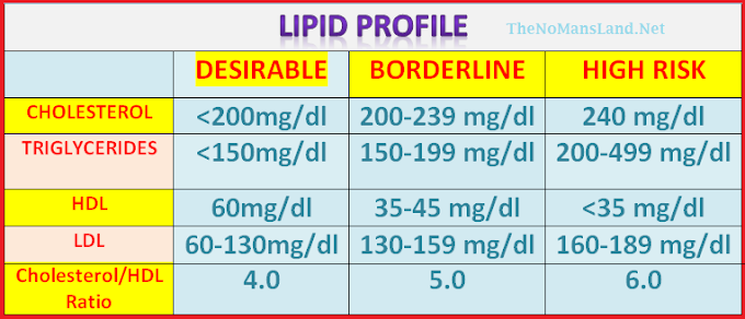 Lipid Profile Tests