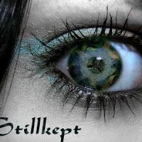 Stillkept - 2005 - Intense Situations of Peril