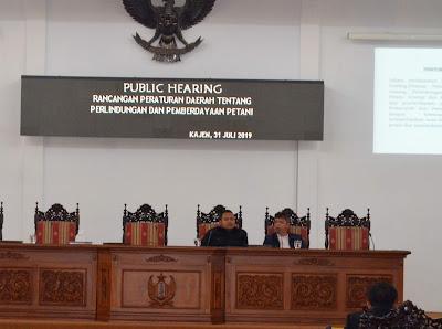 Public hearing raperda