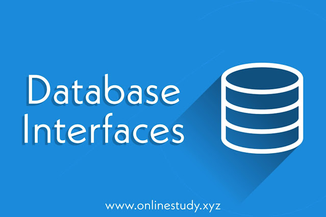 What is Database interfaces?