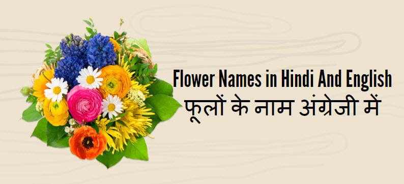 फूलों के नाम अंग्रेजी में , Names of