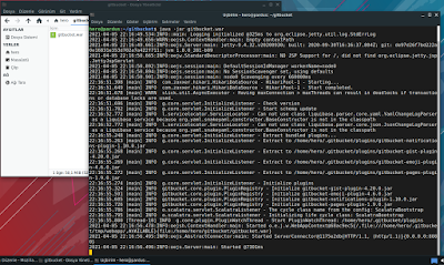 Gitbucket Java Run on Pardus
