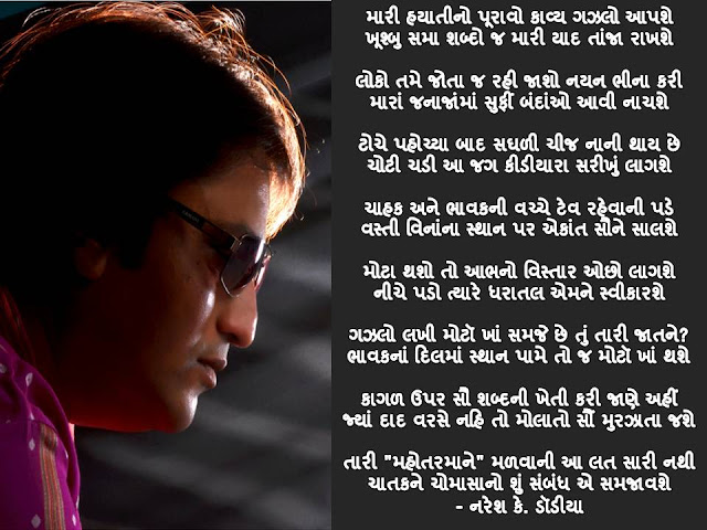 मारी हयातीनो पूरावो काव्य गझलो आपशे Gujarati Gazal By Naresh K. Dodia