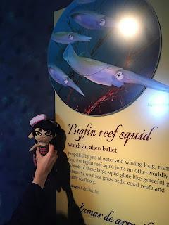 Callie Splatoon plushie Bigfin Reef Squid Exhibit Monterey Bay Aquarium