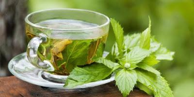 manfaat teh hijau obat jerawat