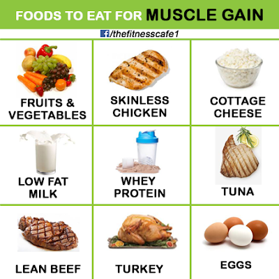 Food-For-Muscles-Gain