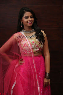 Geethanjali sizzles in Pink at Mixture Potlam Movie Audio Launch 052.JPG