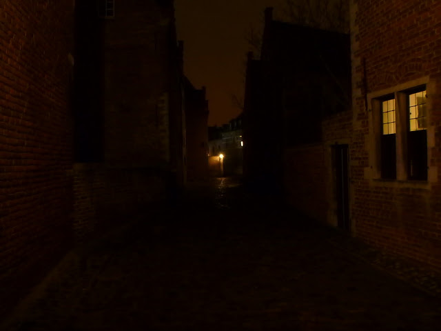 blog.oanasinga.com-winter-in-Europe-Leuven-Belgium-November-2012-(11)