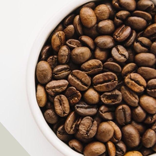 Gambar kopi dan susu beruang