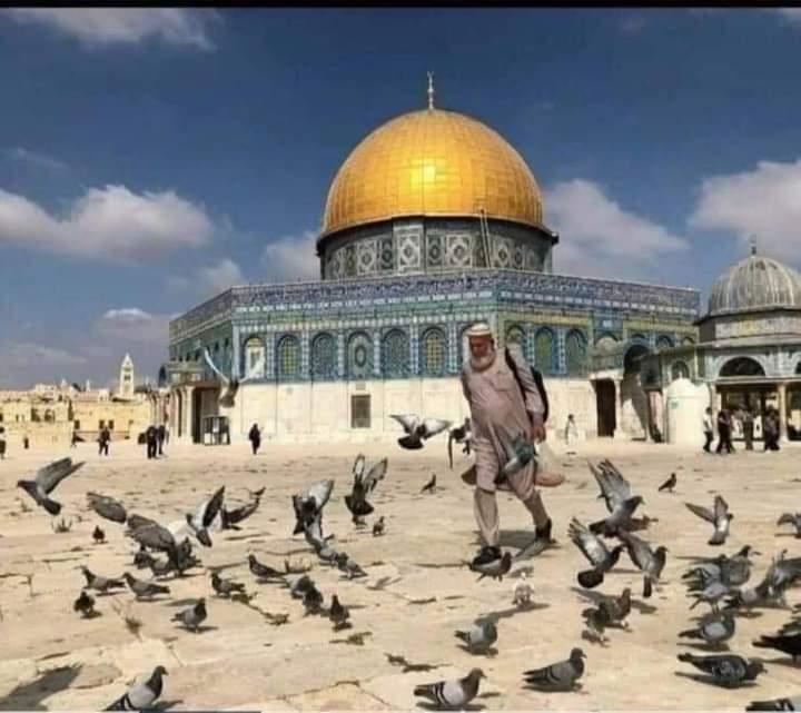 "Innalillahi, ""Abu Hurairah"" Palestina Itu Telah Tiada"