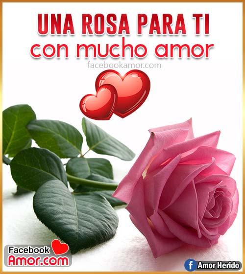 tarjeta de rosa de amor