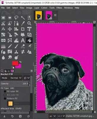 Software Untuk Mengganti Warna Background Gambar-4