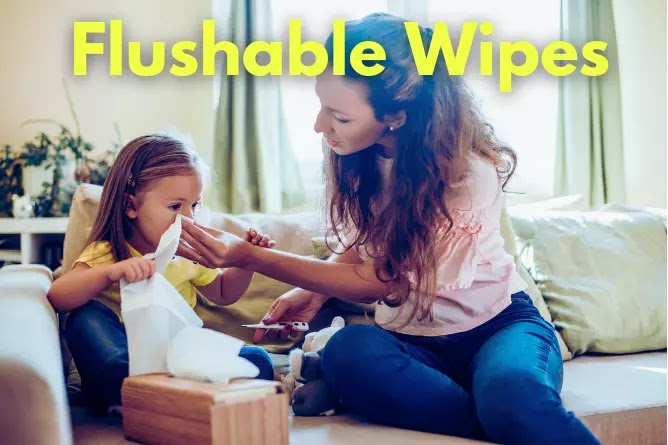 Best Flushable Wipes