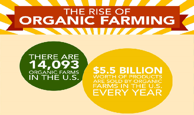 The Rise of Organic Farming #infographic
