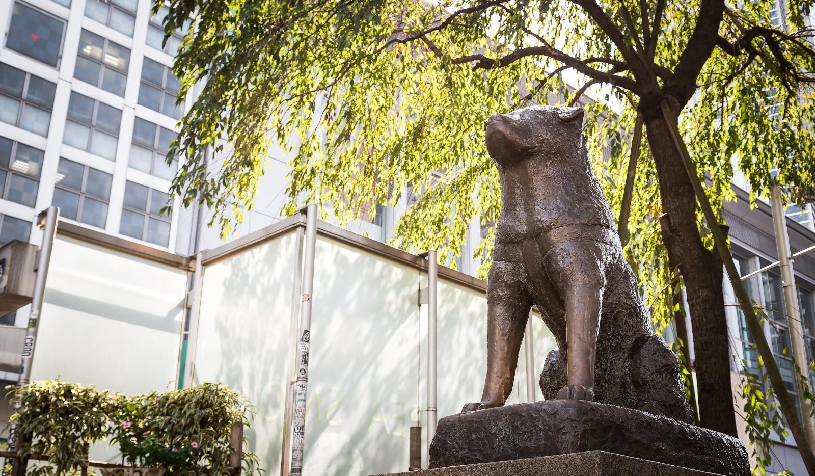 渋谷の座ったハチ公の銅像