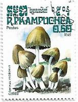 Selo Coprinus micaceus