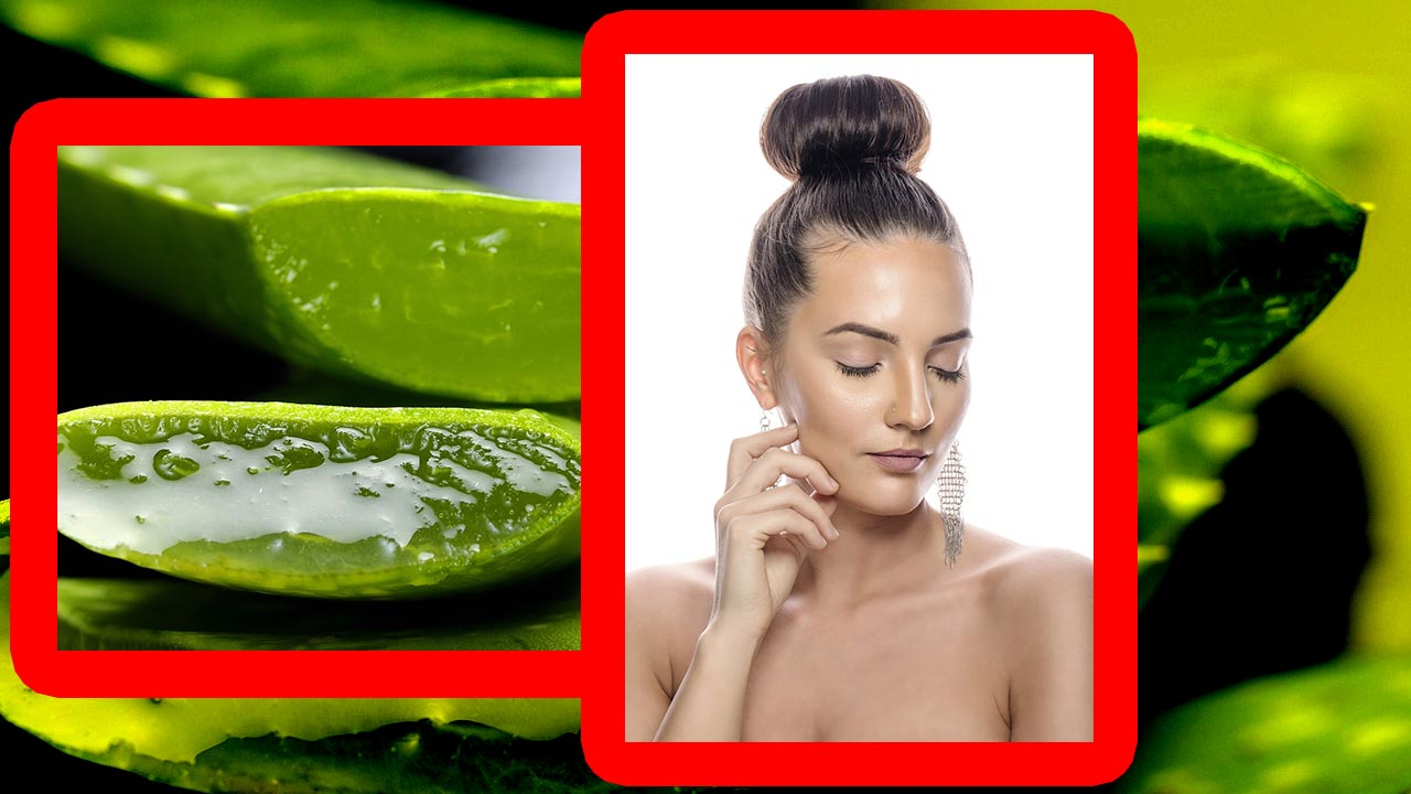 how-to-preserve-aloe-vera-gel-for-face, how-to-use-aloe-vera-on-face, how-to-make-aloe-vera-gel, how-to-make-aloe-vera-gel-for-hair, how-to-use-aloe-vera-for-skin-whitening, Aloe-Vera-Gel-For-Face-How-To-Use