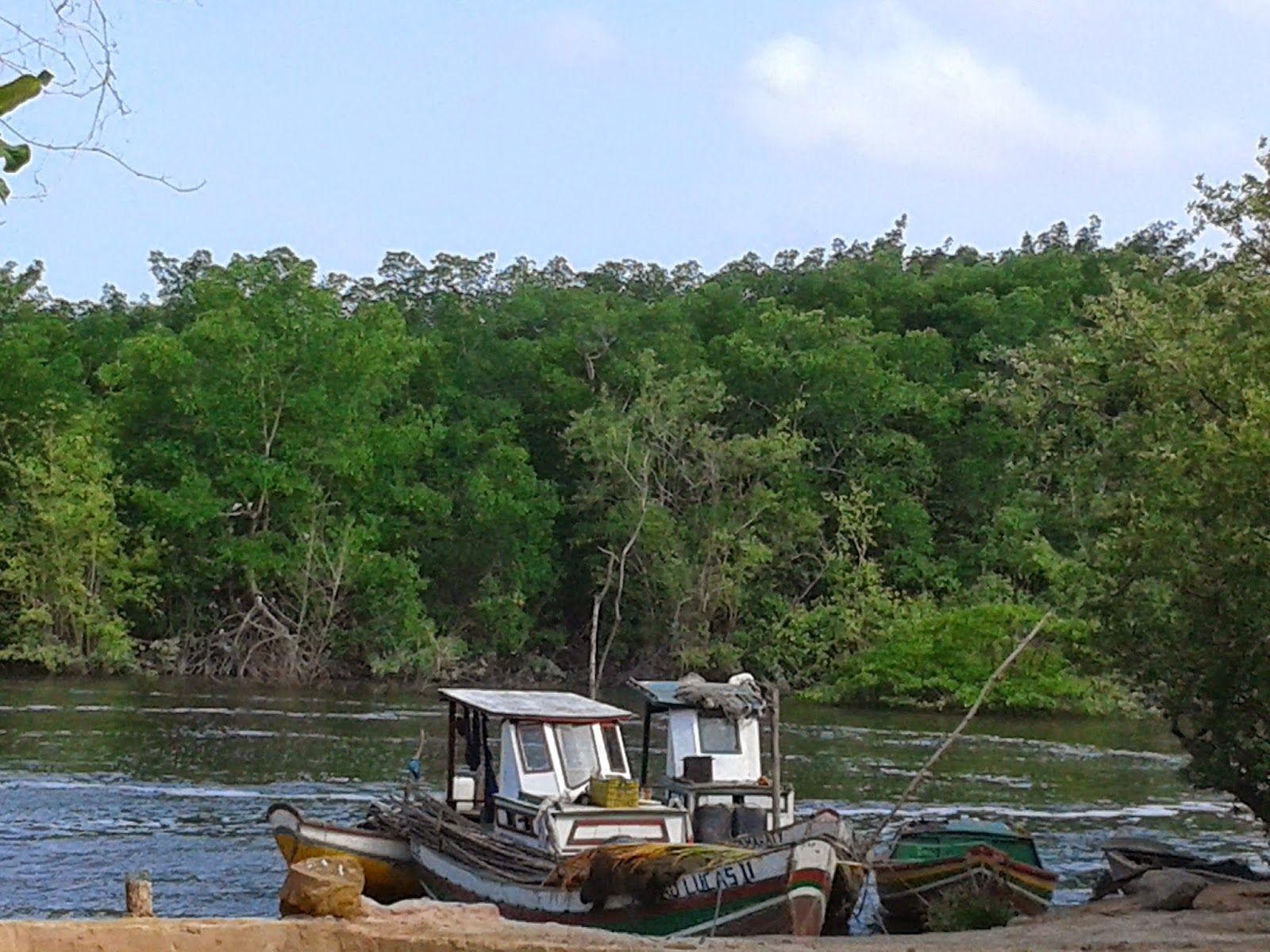 Governo assina ordem para construção de três portos pesqueiros em Paço de Lumiar